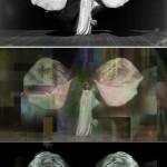 Figure 6: top, Frederick Glasier, Portrait of Loïe Fuller, 1902; bottom, stills from Dancing Glitch